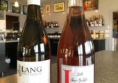 Bottle shots of Pinot Gris and Lang Bubble Rose